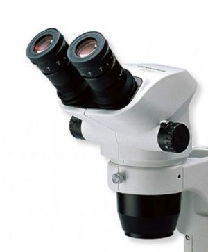 Olympus SZ51 Stereo Head - Binocular